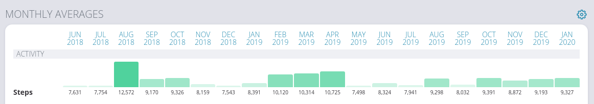 A bar chart since June 2018. It shows the average steps by month. The average seems to be around 8000 steps a month